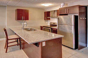 BRAND NEW REDESIGNED SUITES!!!! London Ontario image 2