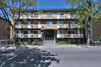 **Beautifully renovated 3 1/2 apts in Plateau (Immed. or July)**