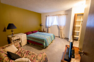 Great room for rent, ensuite BR, utilities included Avail May 1