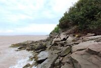 Gorgeous waterfront lot on bay of Fundy! 61.5 acres