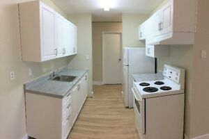 Comfortable Spacious 1 bedroom -Madison Apartment