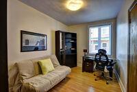 Condo 3 chambres, Hochelaga-Maisonneuve, quartier jeune et animé