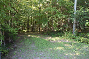 Haliburton Real Estate Team -Builing Lot Near Halls Lake-$22,900