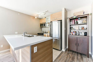 Beautiful 2 Bedrooms & 2 Bathrooms unit King George Skytrain St