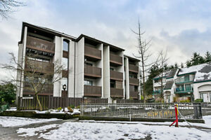 10-340 Ginger Drive, New Westminster