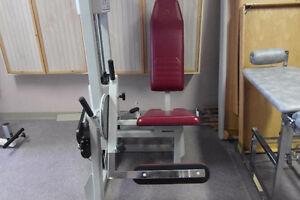 Rehab, gym, exercise equipment Stratford Kitchener Area image 4