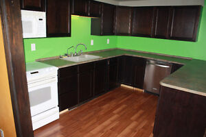 3 Bedroom For Rent Near Loyalist College BEST OFFER