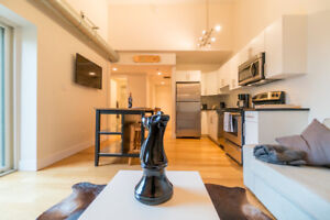 1 bedroom_Penthouse in Osborne Village Condo w 16ft Ceilings