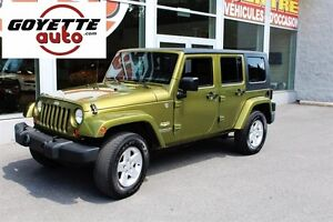 Jeep Wrangler 4WD 4dr Unlimited Sahara 2007, A/C, Cruise, Mags