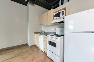 Private, Safe, Central 1 Bed Condo - Perfect for Students Edmonton Edmonton Area image 8