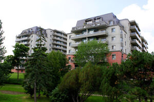 Want** Apartment Owners looking/thinking of Selling? Kitchener / Waterloo Kitchener Area image 8