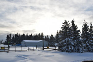 NEW LISTING - huge house and shop on 15 acres by Skeleton Lake
