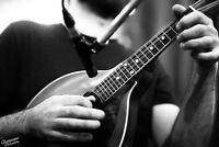 Banjo, Mandolin & Guitar Lessons!