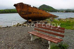 St. John's photography 8x10 St. John's Newfoundland image 6