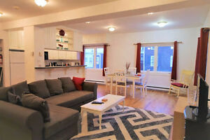 Newly renovated fully furnished house in downtown St. John's