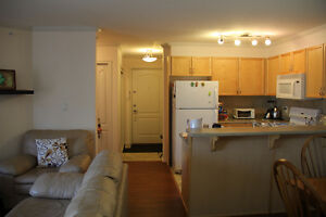 Downtown 2 Bed 2 Bath Condo Central Location for rent Sept 1