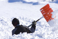 SNOW SHOVELLING WORKERS NEEDED