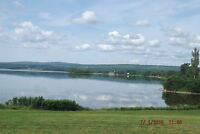 2.6 acres Waterfront Property, Lyons Brook,NEW PRICE 180,000.00