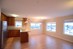 3 year old 2bd/2bth unit in Library Square - So Many Windows!