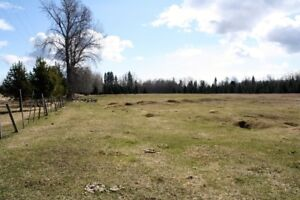Great property for a country estate in city limits!
