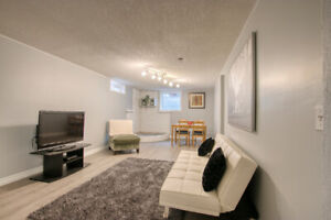 FULLY FURNISHED STUDENT / 8-12 MONTH RENTAL
