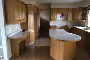 Solid oak kitchen cabinets with countertop & pantry