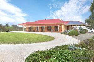B&B business, 3 homes, lifestyle property, 27 acres Clare Clare Area Preview