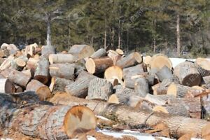 wanted firewood dump off site we take hardwoods or softwood