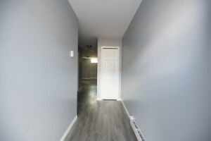 Brand New 1 Bedroom 1 Bath! Spacious and Modern.