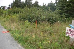 CONCEPTION BAY IN BAY ROBERTS NL. OPEN LOT FOR SALE
