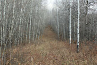 10.25 acres of Recreational Land - Elk Point Area  $79,000.00