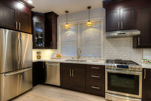 EXTENSIVELY RENOVATED DOWNTOWN CHARM Kitchener / Waterloo Kitchener Area image 3