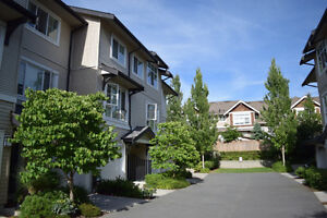 newer town home in south surrey (morgan crossing) for sale