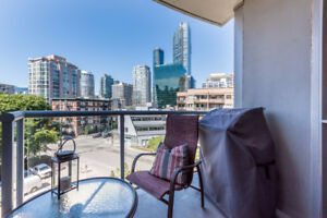 2 Bedroom + Den + Patio (BBQ) Central Dwt Condo (Dogs allowed)