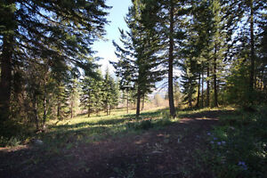 89 Twin Lakes Rd, Enderby BC - 2.5 Acre Dream Home Lot!