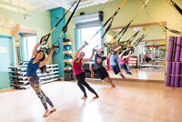 TRX Classes in Downtown Halifax