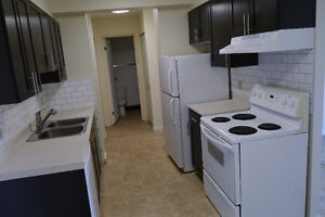 Newly Renovated One Bedroom Utilities included