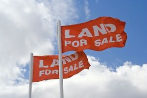 Looking for Bare Land or Commercial Building For Sale!