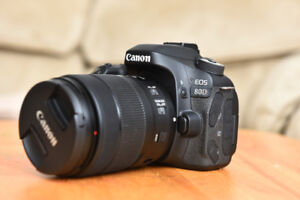 Canon 80D with 18-135 IS USM lens