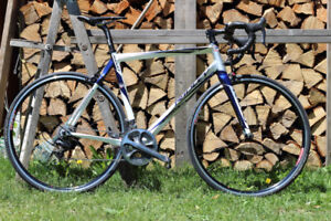 2012 Ridley Damocles Road Bike