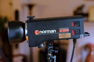 Flash Norman 1200