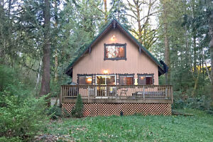 Mt. Baker Lodging - Cabin #22 - HOT TUB, FIREPLACE, BBQ,SLEEPS-8
