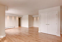 Beautiful high end apt in downtown Montreal