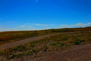4 Acres Pine Coulee Stavely Alberta