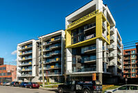 New Condo 2 bed in TMR***Gym, rooftop terrasse, Spa, BBQ***