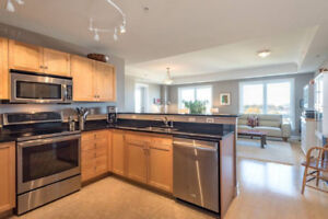 Furnished Bright Condo on the Commons -  2 Bedroom All Inclusive