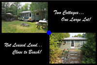 ONE LOT, TWO COTTAGES ~ AMBER JENINGS, BROKER