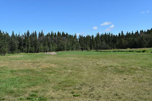 Gorgeous Treed Site Waiting for YOUR Dream Home!!  Leask, SK
