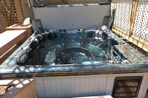 Barely Used Dynasty Spa price - negotiable