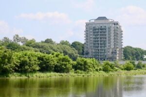 One Bedroom Waterscape Unit with Grand River View / MLS 30591378